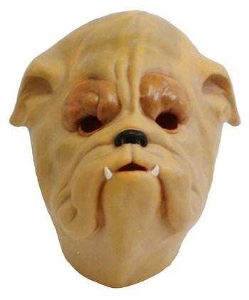 Собака Бульдог - фото 15452