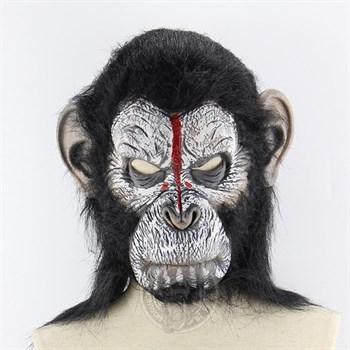Цезарь (Планета обезьян: Революция) - фото 31785