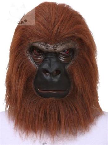 Орангутанг коричневый (обезьяна) - фото 35434