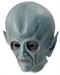 Инопланетянин / Пришелец (НЛО) с большой головой - фото 34596
