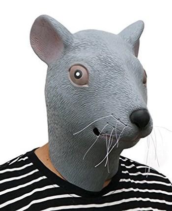 Мышь / Крыса - фото 33398