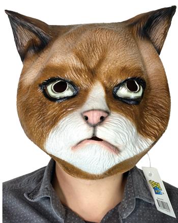 Голова Кота - фото 35545