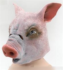 Свинья / Поросёнок