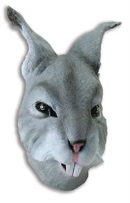 Заяц серый