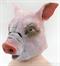Свинья / Поросёнок - фото 35079