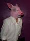 Свинья / Поросёнок - фото 35080