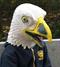 Белый орёл 2.0 - фото 37044